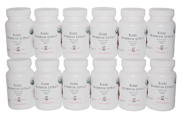 Reishi Mushroom Extract - 1 Year Supply