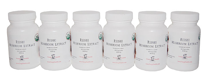 Reishi Mushroom Extract - 6 Month Supply